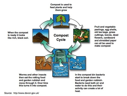 CompostCycle.jpg
